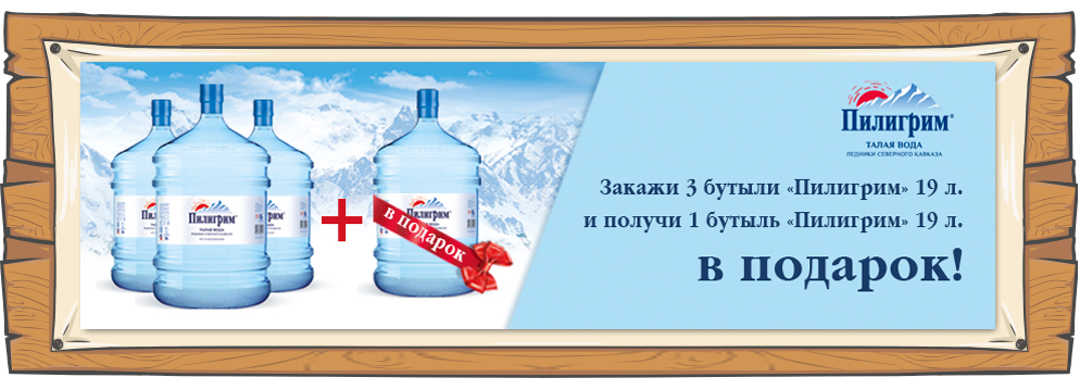 board-4-piligrim